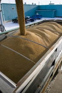 truck feed laden